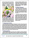 0000084613 Word Templates - Page 4