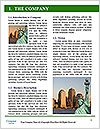 0000084617 Word Template - Page 3