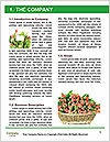 0000084634 Word Templates - Page 3