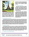0000084638 Word Template - Page 4