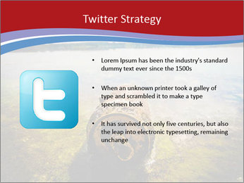 0000084653 PowerPoint Template - Slide 9