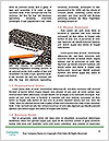 0000084657 Word Template - Page 4