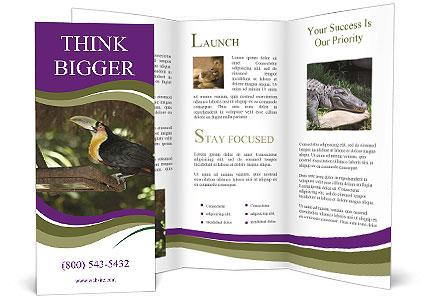 0000084665 Brochure Templates