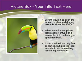 0000084665 PowerPoint Templates - Slide 13