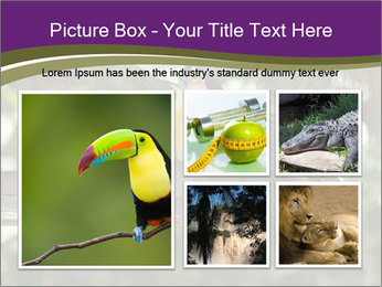 0000084665 PowerPoint Templates - Slide 19