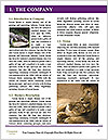 0000084665 Word Templates - Page 3