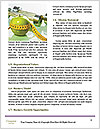 0000084665 Word Templates - Page 4