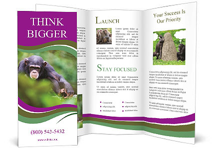 0000084666 Brochure Templates