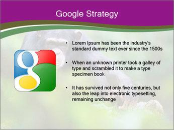 0000084666 PowerPoint Template - Slide 10