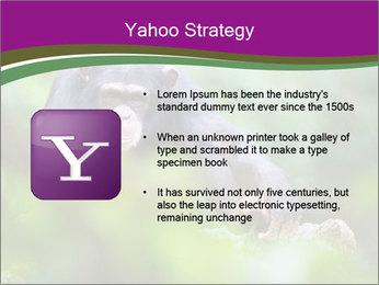 0000084666 PowerPoint Template - Slide 11