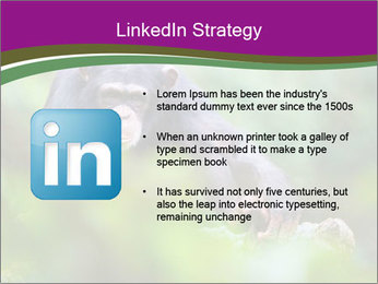 0000084666 PowerPoint Template - Slide 12