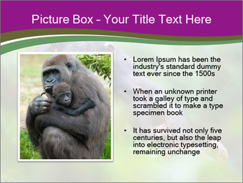 0000084666 PowerPoint Template - Slide 13