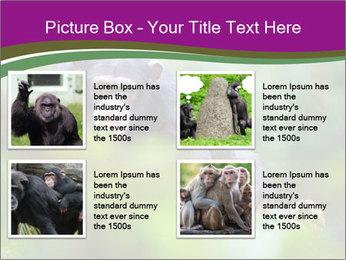 0000084666 PowerPoint Template - Slide 14