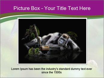 0000084666 PowerPoint Template - Slide 16