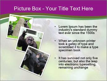 0000084666 PowerPoint Template - Slide 17