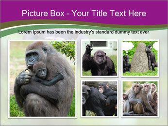 0000084666 PowerPoint Template - Slide 19