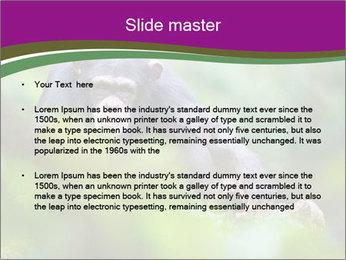 0000084666 PowerPoint Template - Slide 2