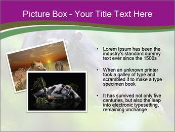0000084666 PowerPoint Template - Slide 20