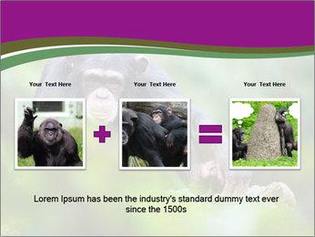 0000084666 PowerPoint Template - Slide 22