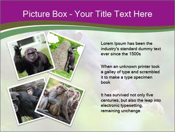 0000084666 PowerPoint Template - Slide 23