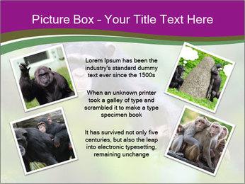 0000084666 PowerPoint Template - Slide 24