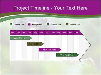 0000084666 PowerPoint Template - Slide 25