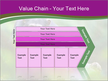 0000084666 PowerPoint Template - Slide 27