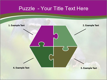 0000084666 PowerPoint Template - Slide 40
