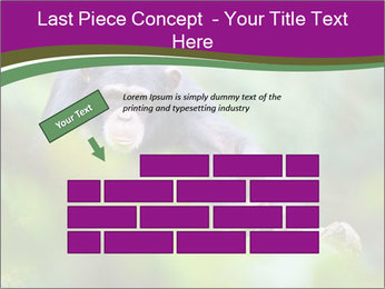 0000084666 PowerPoint Template - Slide 46
