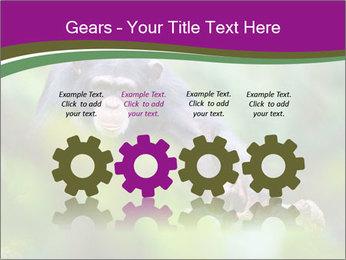 0000084666 PowerPoint Template - Slide 48