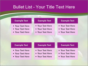 0000084666 PowerPoint Template - Slide 56