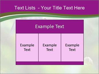 0000084666 PowerPoint Template - Slide 59