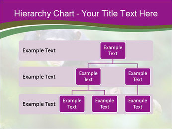 0000084666 PowerPoint Template - Slide 67