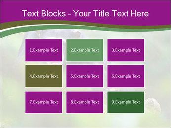 0000084666 PowerPoint Template - Slide 68