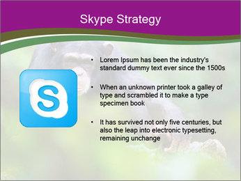 0000084666 PowerPoint Template - Slide 8
