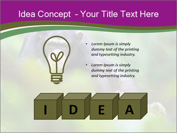 0000084666 PowerPoint Template - Slide 80