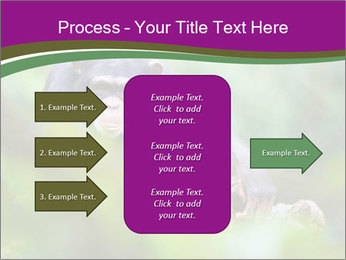 0000084666 PowerPoint Template - Slide 85