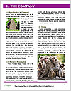 0000084666 Word Templates - Page 3