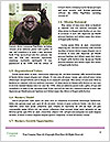 0000084666 Word Templates - Page 4