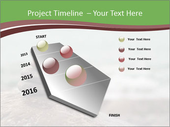 0000084668 PowerPoint Template - Slide 26