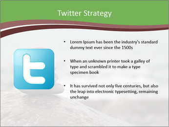 0000084668 PowerPoint Template - Slide 9