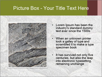 0000084673 PowerPoint Template - Slide 13