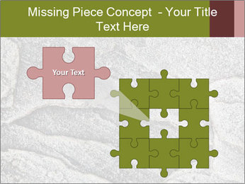 0000084673 PowerPoint Template - Slide 45