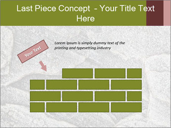 0000084673 PowerPoint Template - Slide 46