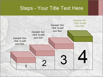 0000084673 PowerPoint Template - Slide 64