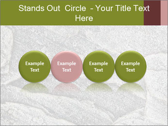 0000084673 PowerPoint Templates - Slide 76