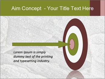 0000084673 PowerPoint Template - Slide 83