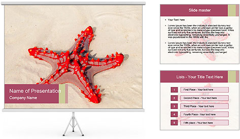 0000084677 PowerPoint Template