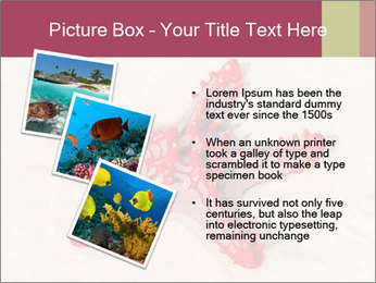 0000084677 PowerPoint Template - Slide 17