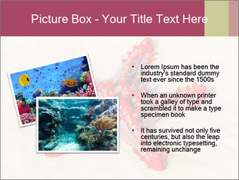 0000084677 PowerPoint Template - Slide 20